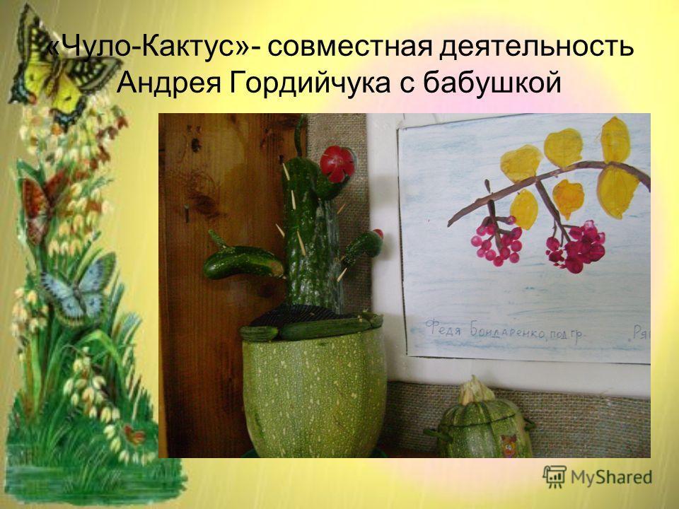 «Чуло-Кактус»- совместная деятельность Андрея Гордийчука с бабушкой
