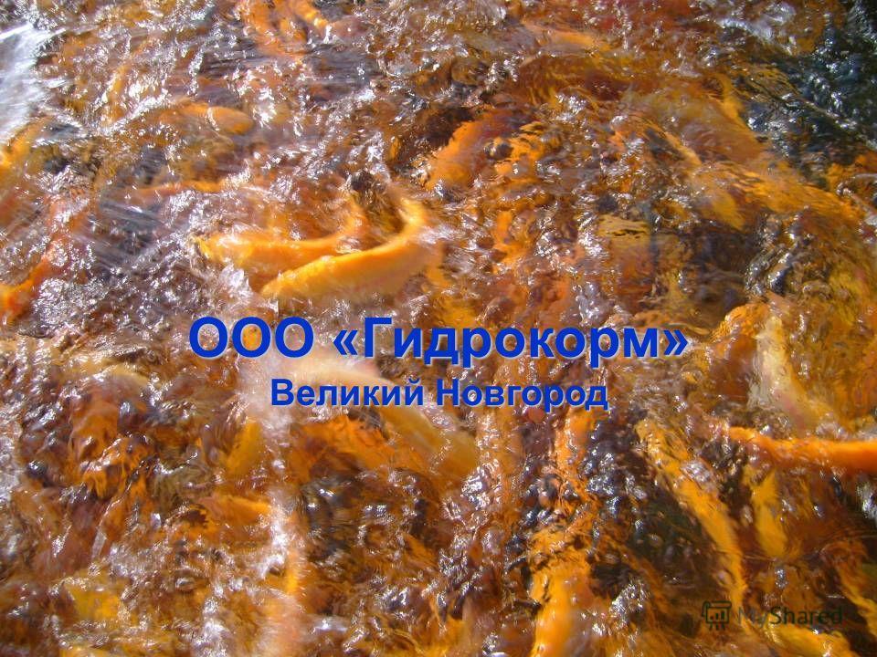 ООО «Гидрокорм» Великий Новгород