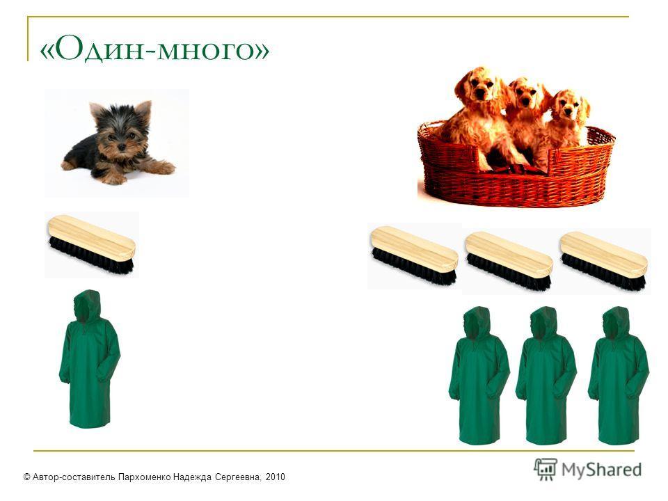 «Один-много» © Автор-составитель Пархоменко Надежда Сергеевна, 2010
