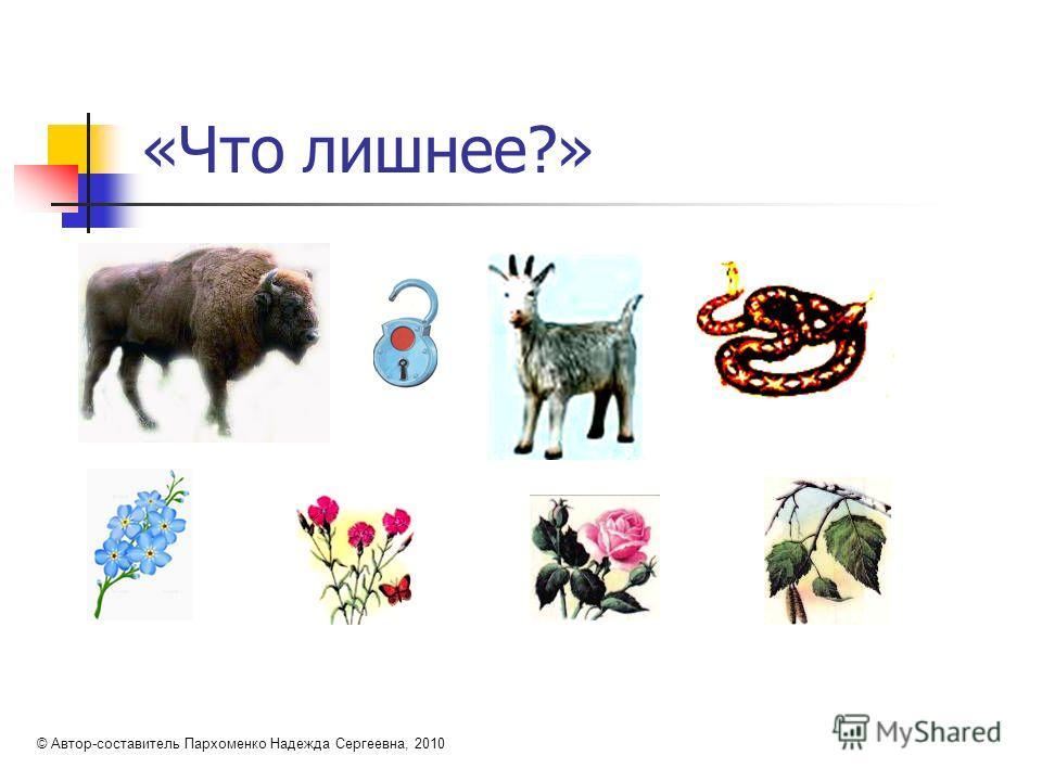 «Что лишнее?» © Автор-составитель Пархоменко Надежда Сергеевна, 2010