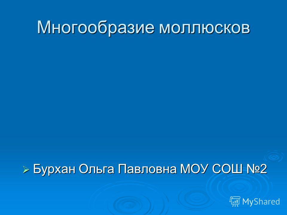 Многообразие моллюсков Бурхан Ольга Павловна МОУ СОШ 2 Бурхан Ольга Павловна МОУ СОШ 2