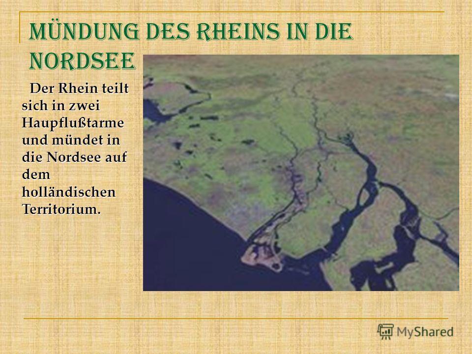 Mündung des Rheins in die Nordsee Der Rhein teilt sich in zwei Haupflußtarme und mündet in die Nordsee auf dem holländischen Territorium. Der Rhein teilt sich in zwei Haupflußtarme und mündet in die Nordsee auf dem holländischen Territorium.