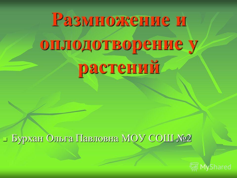 Размножение и оплодотворение у растений Бурхан Ольга Павловна МОУ СОШ 2 Бурхан Ольга Павловна МОУ СОШ 2