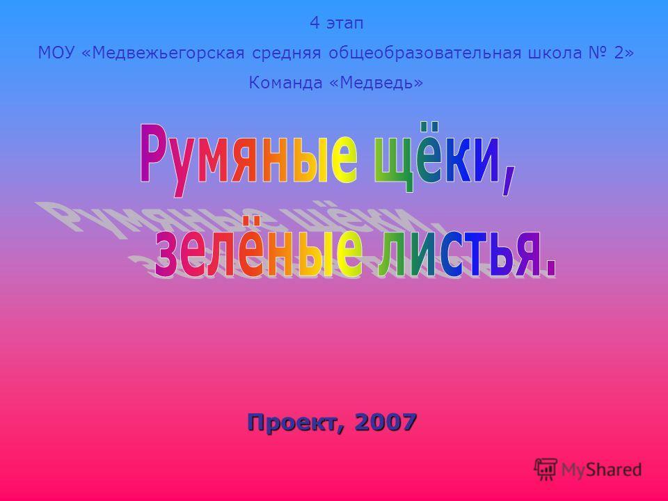 Проект, 2007 4 этап МОУ «Медвежьегорская средняя общеобразовательная школа 2» Команда «Медведь»
