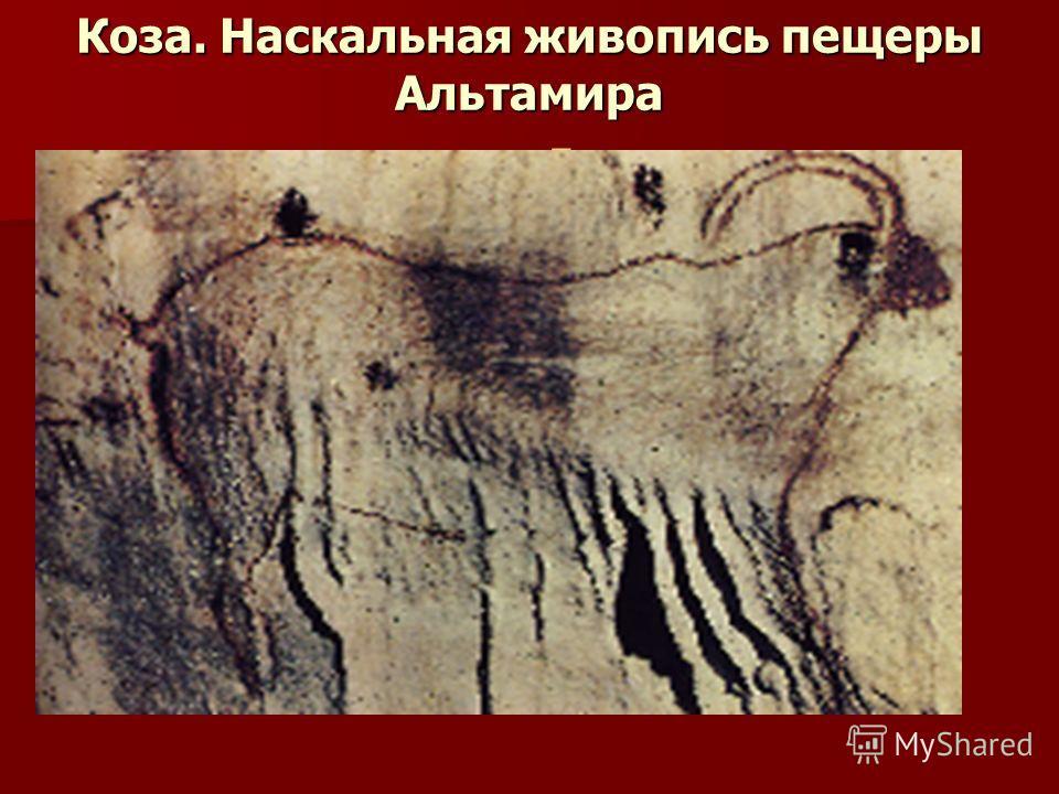 Коза. Наскальная живопись пещеры Альтамира