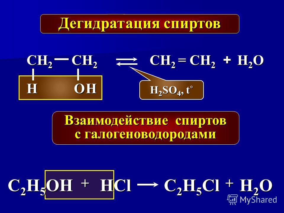 Дегидратация спиртов СН 2 ОН H 2 SO 4, t˚ СН 2 = СН 2 H2OH2OH2OH2O СН 2 Н + C 2 H 5 OH + НCl C 2 H 5 Cl + Н2OН2OН2OН2O Взаимодействие спиртов с галогеноводородами