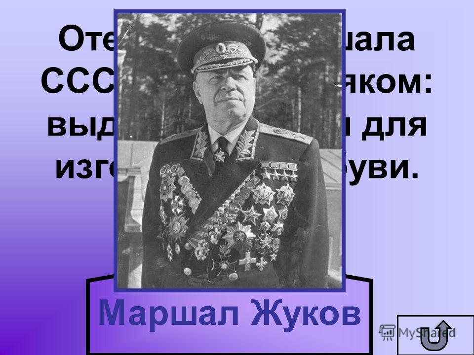 Отец этого маршала СССР был скорняком: выделывал кожи для изготовления обуви. Маршал Жуков