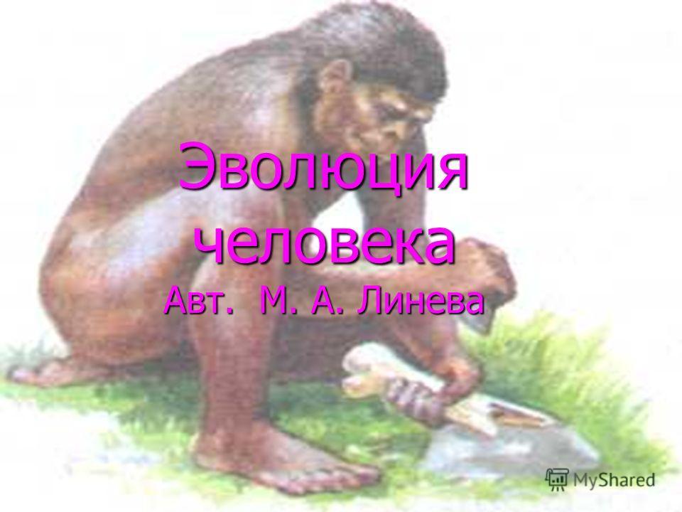 Эволюция человека Авт. М. А. Линева
