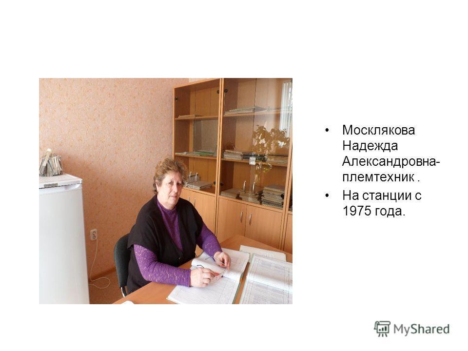 Москлякова Надежда Александровна- племтехник. На станции с 1975 года.