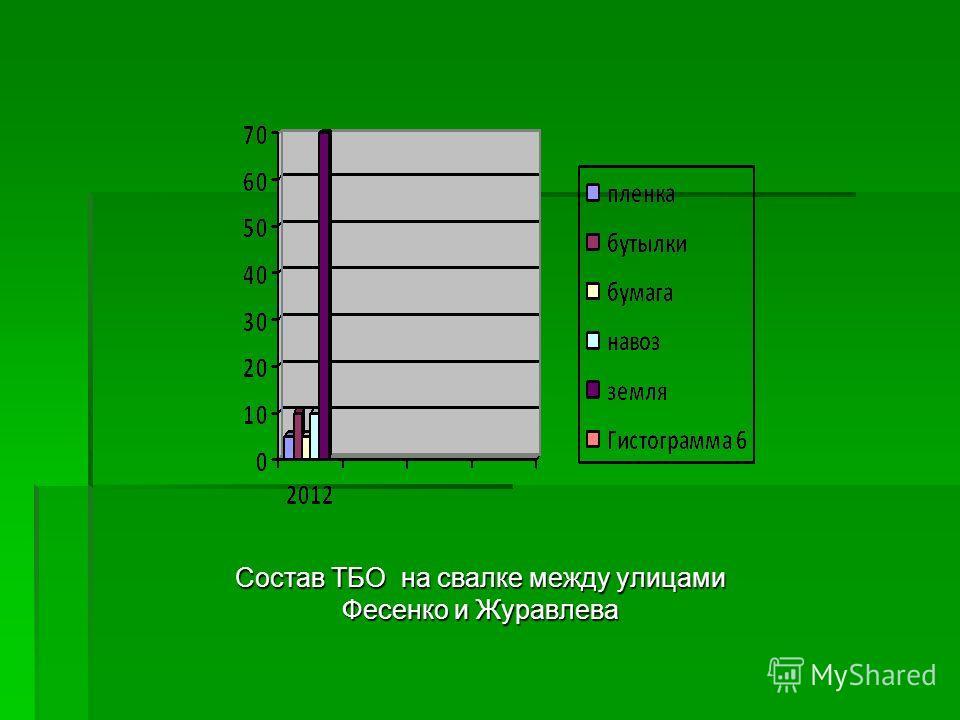 Состав ТБО на свалке между улицами Фесенко и Журавлева