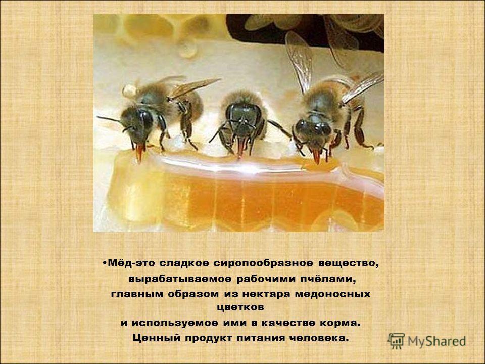 Мёд-это сладкое сиропообразное вещество, вырабатываемое рабочими пчёлами, главным образом из нектара медоносных цветков и используемое ими в качестве корма. Ценный продукт питания человека.
