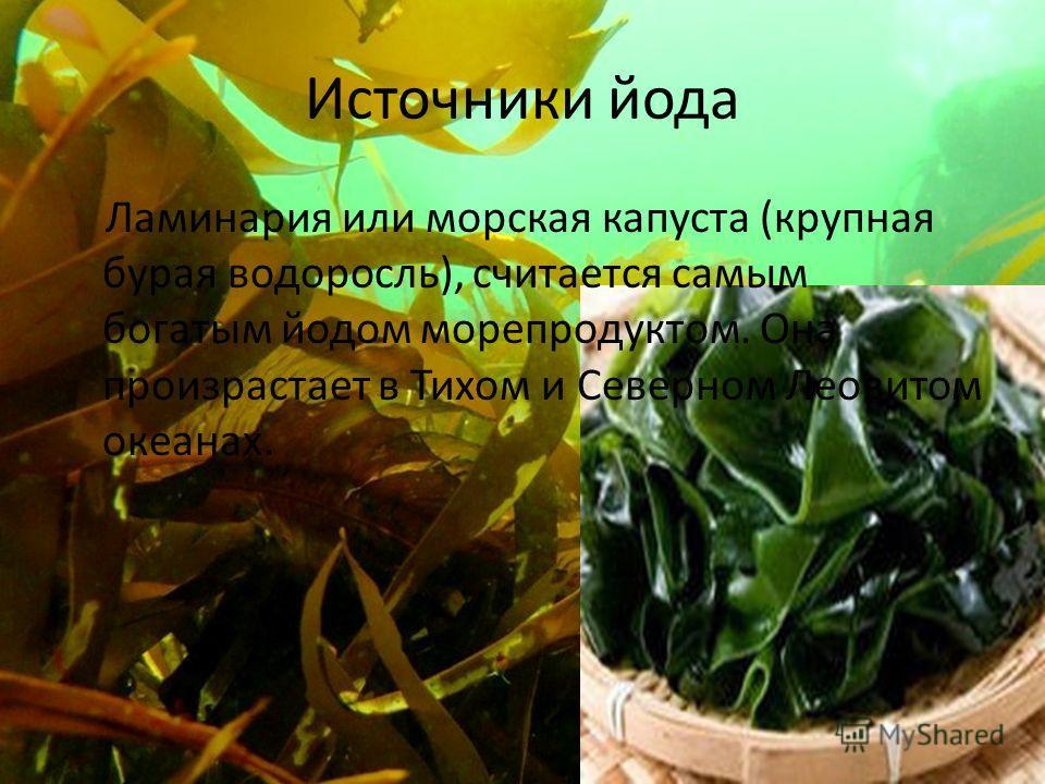 Источники йода Ламинария или морская капуста (крупная бурая водоросль), считается самым богатым йодом морепродуктом. Она произрастает в Тихом и Северном Леовитом океанах.