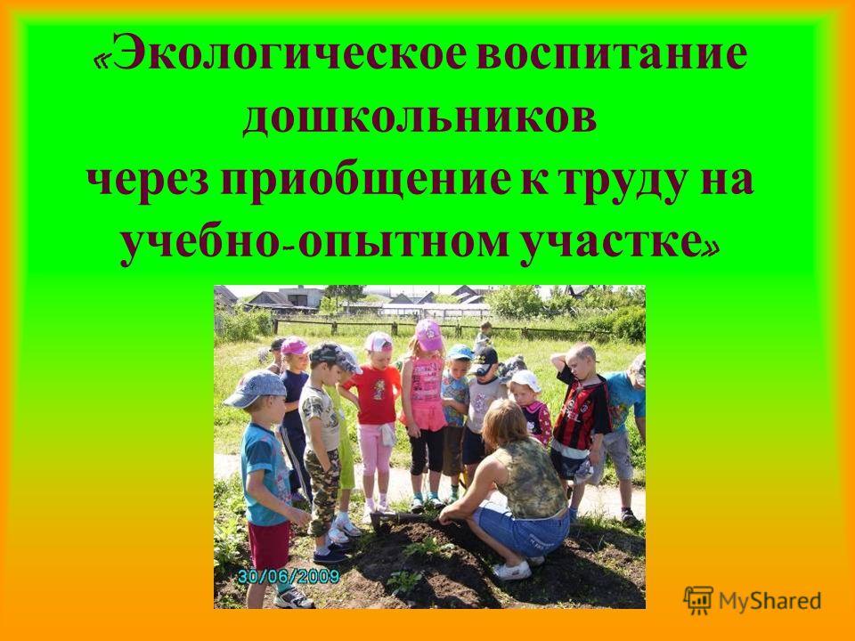 « Экологическое воспитание дошкольников через приобщение к труду на учебно - опытном участке »