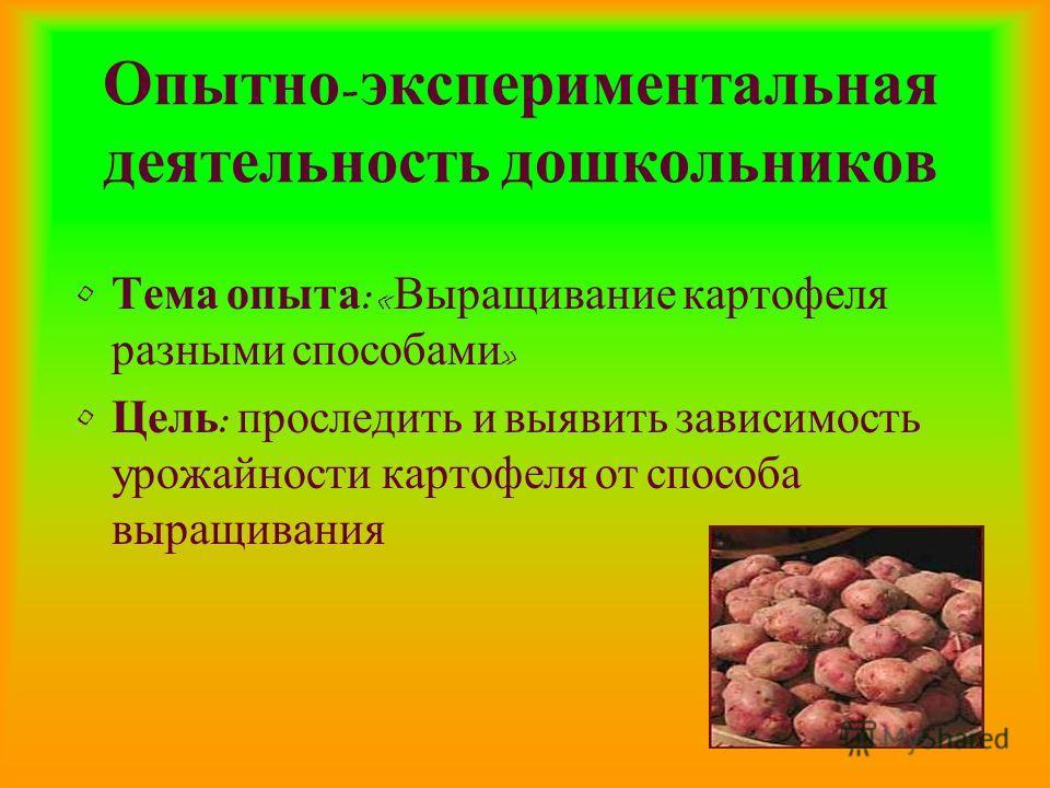 Опытно - экспериментальная деятельность дошкольников Тема опыта : « Выращивание картофеля разными способами » Цель : проследить и выявить зависимость урожайности картофеля от способа выращивания