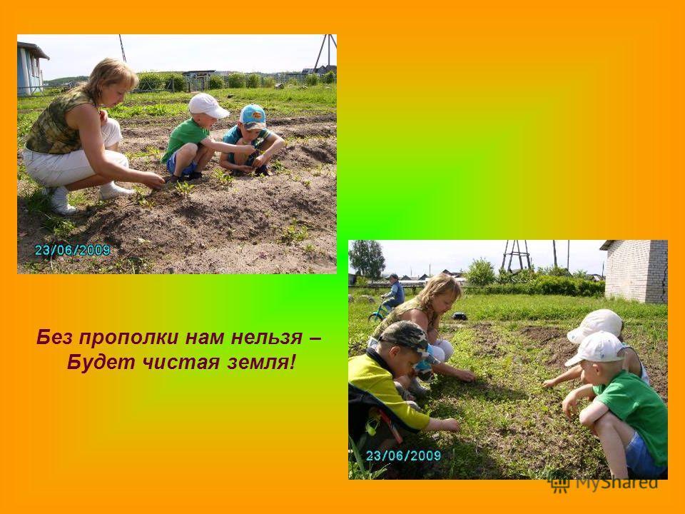 Без прополки нам нельзя – Будет чистая земля!