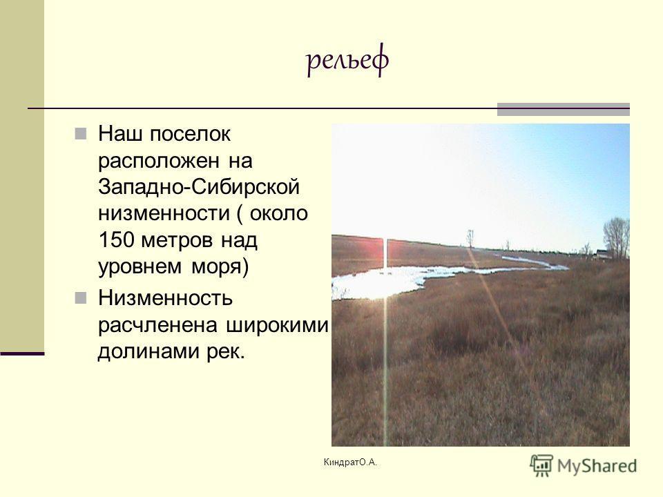 КиндратО.А. рельеф Наш поселок расположен на Западно-Сибирской низменности ( около 150 метров над уровнем моря) Низменность расчленена широкими долинами рек.