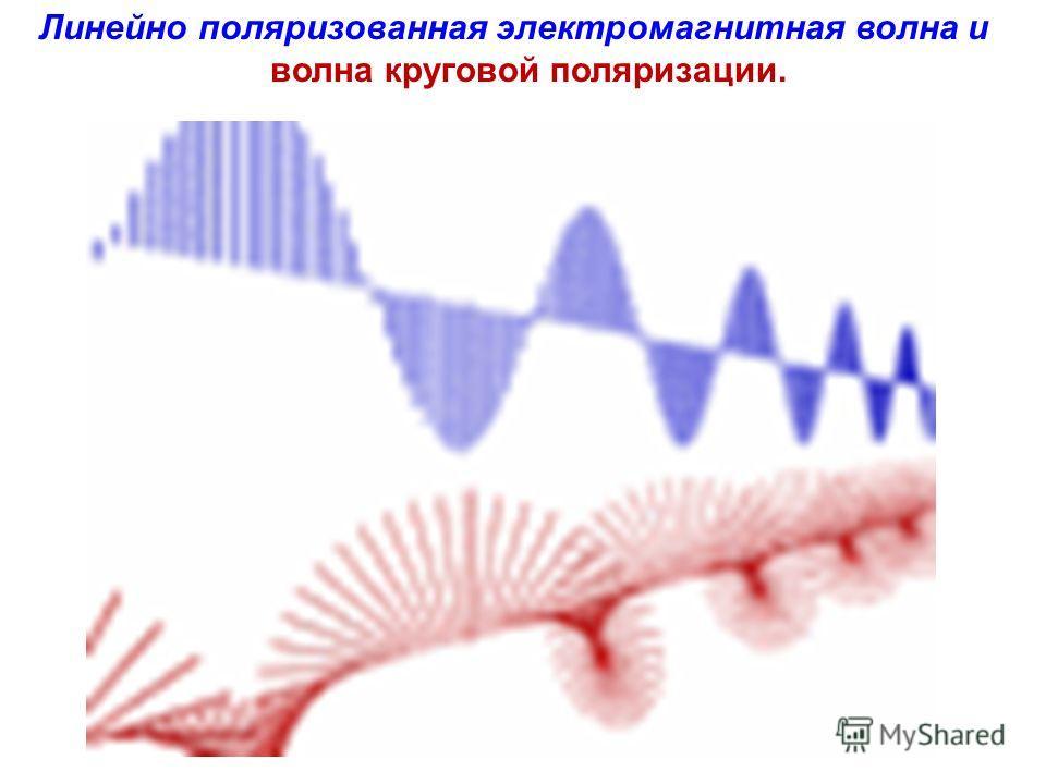 Линейно поляризованная электромагнитная волна и волна круговой поляризации.