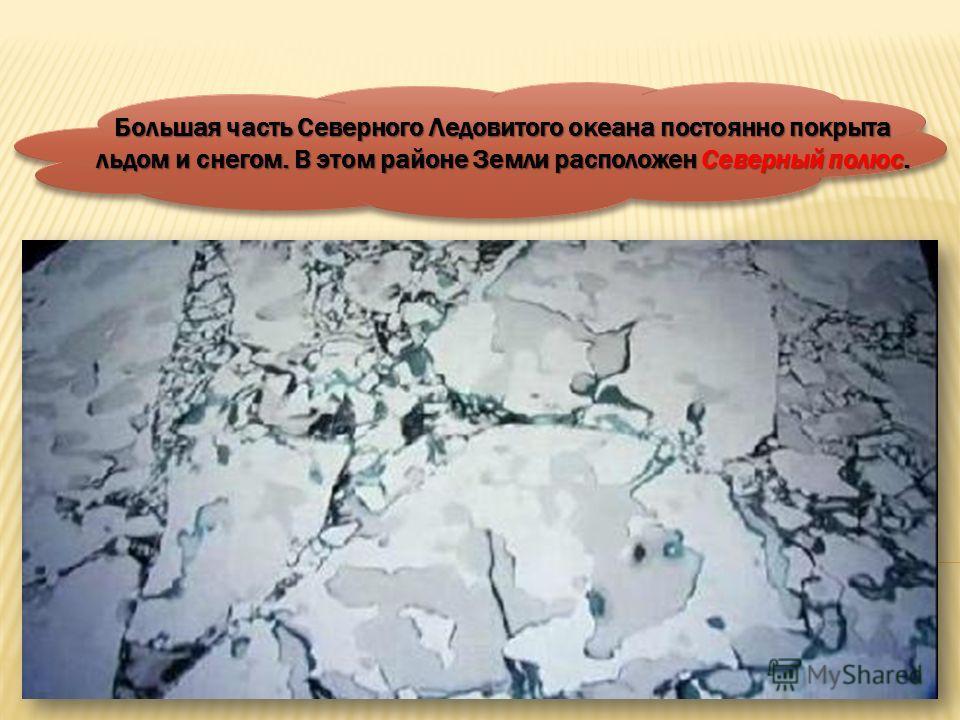 СЕВЕРНЫЙ ПОЛЮС ЮЖНЫЙ ПОЛЮС На Земле есть очень холодные районы – Арктика и Антарктида.