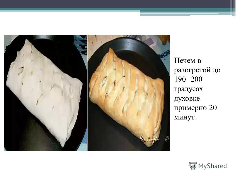 Печем в разогретой до 190- 200 градусах духовке примерно 20 минут.