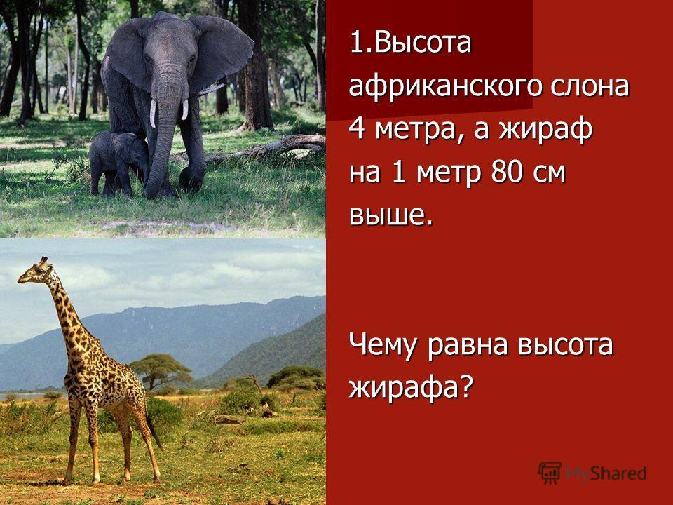 1.Высота африканского слона 4 метра, а жираф на 1 метр 80 см выше. Чему равна высота жирафа?