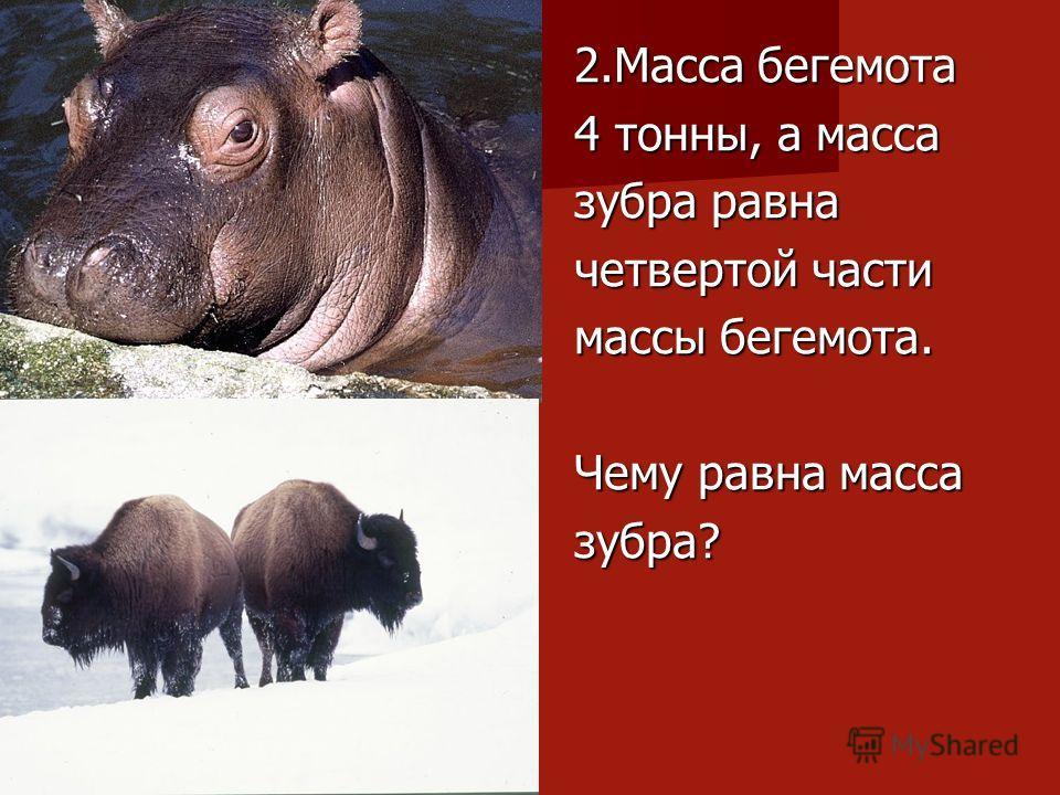 2.Масса бегемота 4 тонны, а масса зубра равна четвертой части массы бегемота. Чему равна масса зубра?