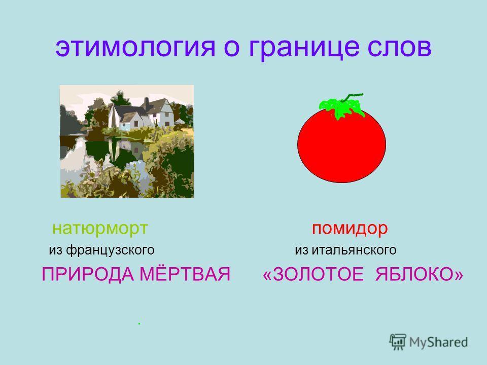 этимология о границе слов натюрморт помидор из французского из итальянского ПРИРОДА МЁРТВАЯ «ЗОЛОТОЕ ЯБЛОКО»