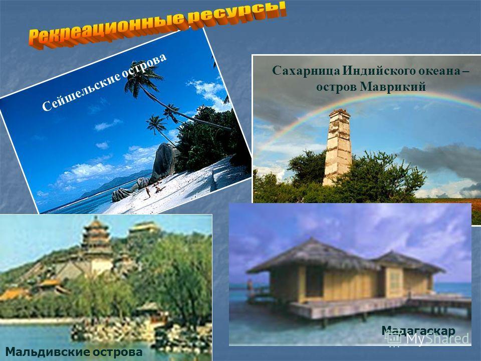 Сейшельские острова Сахарница Индийского океана – остров Маврикий Мальдивские острова Мадагаскар