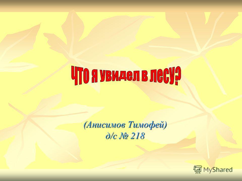 (Анисимов Тимофей) д/с 218