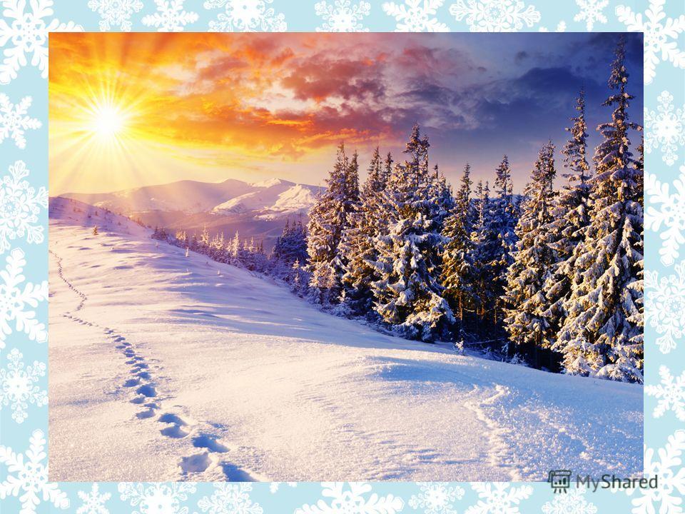 МОРОЗ СНЕГ ВЬЮГ а ХОЛОД Зимняя буря, погода со снегом, метель. -5 б. 5 зв. Словарно – орфографическая работа