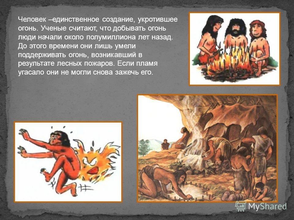 Человек –единственное создание, укротившее огонь. Ученые считают, что добывать огонь люди начали около полумиллиона лет назад. До этого времени они лишь умели поддерживать огонь, возникавший в результате лесных пожаров. Если пламя угасало они не могл