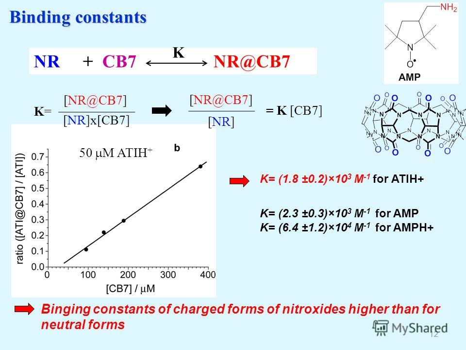 Binding constants Binding constants 12 Binging constants of charged forms of nitroxides higher than for neutral forms NR + CB7 NR@CB7 K K=K= [NR@CB7] [NR]x[CB7] = K [CB7] [NR@CB7] [NR] K= (2.3 ±0.3)×10 3 M -1 for AMP K= (6.4 ±1.2)×10 4 M -1 for AMPH+