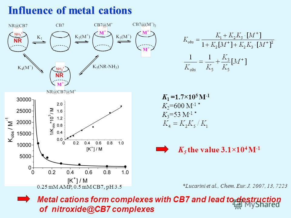 Influence of metal cations *Lucarini et al., Chem. Eur. J. 2007, 13, 7223 0.25 mM AMP, 0.5 mM CB7, pH 3.5 Metal cations form complexes with CB7 and lead to destruction of nitroxide@CB7 complexes K 1 =1.7×10 5 M -1 K 2 =600 M -1 * K 3 =53 M -1 * K 5 t