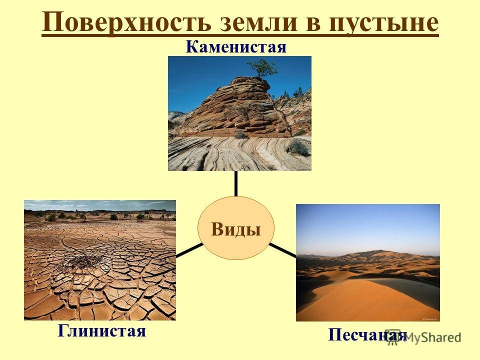 Поверхность земли в пустыне Каменистая Песчаная Глинистая
