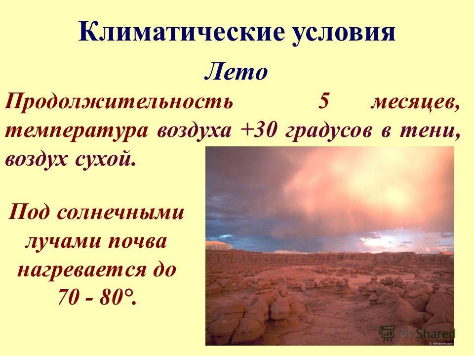 Лето Продолжительность 5 месяцев, температура воздуха +30 градусов в тени, воздух сухой. Климатические условия Под солнечными лучами почва нагревается до 70 - 80°.