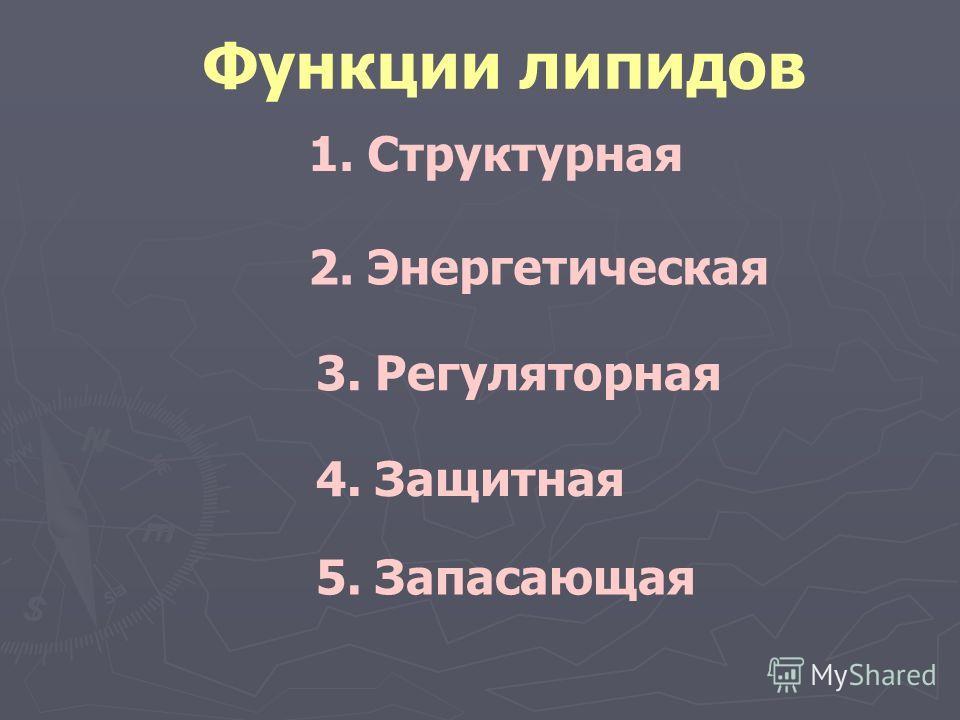 Функции липидов 1. Структурная 2. Энергетическая 4. Защитная 3. Регуляторная 5. Запасающая