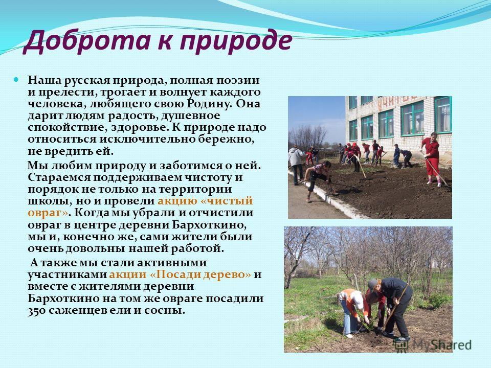 Доброта к природе Наша русская природа, полная поэзии и прелести, трогает и волнует каждого человека, любящего свою Родину. Она дарит людям радость, душевное спокойствие, здоровье. К природе надо относиться исключительно бережно, не вредить ей. Мы лю