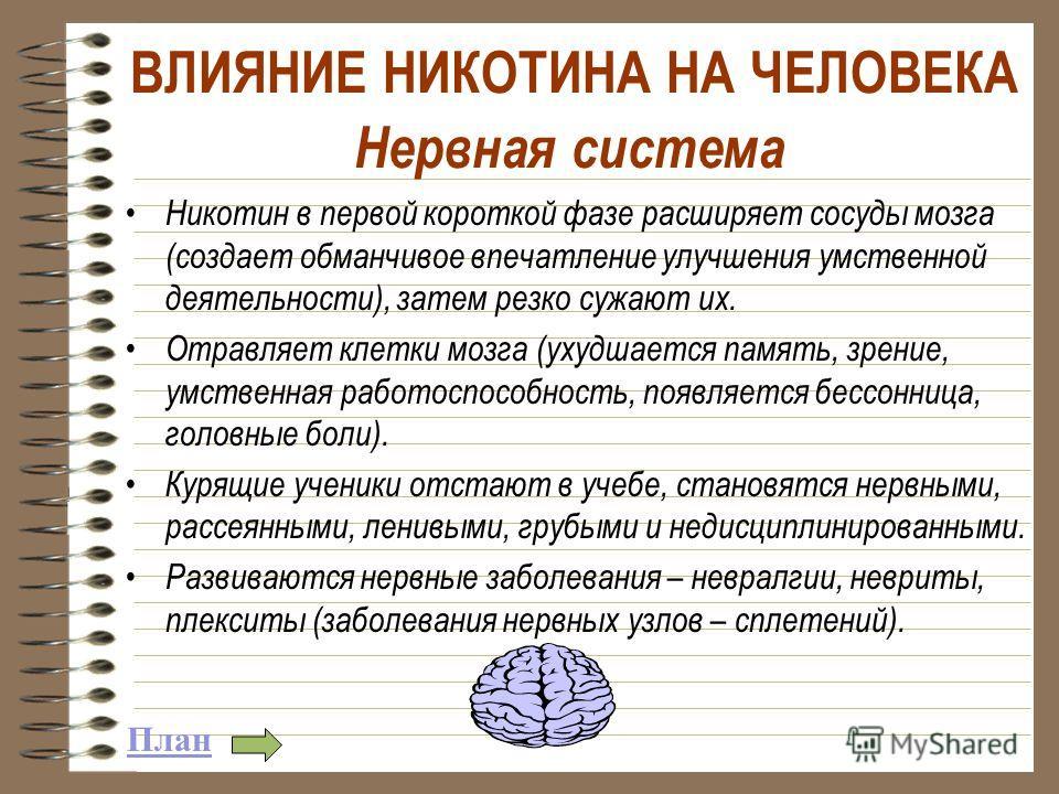 Нервная система Никотин в первой короткой фазе расширяет сосуды мозга (создает обманчивое впечатление улучшения умственной деятельности), затем резко сужают их. Отравляет клетки мозга (ухудшается память, зрение, умственная работоспособность, появляет
