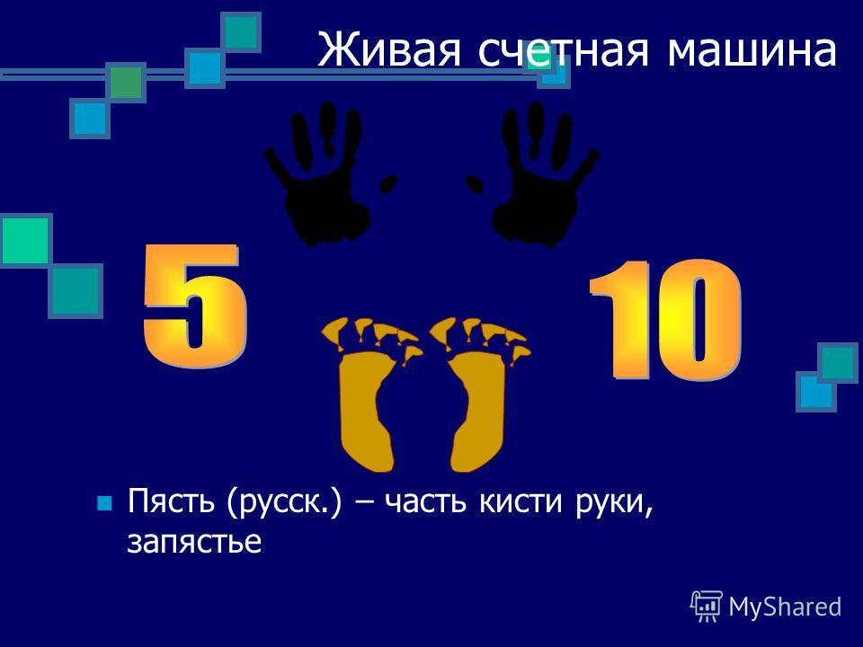 Живая счетная машина Пясть (русск.) – часть кисти руки, запястье