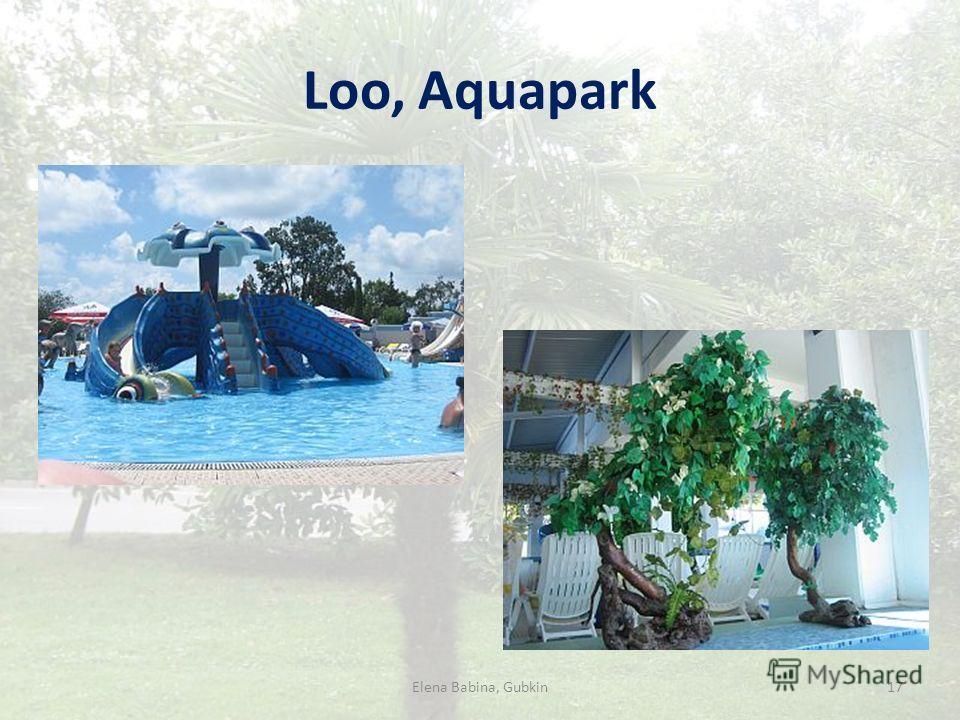 Loo, Aquapark 17Elena Babina, Gubkin