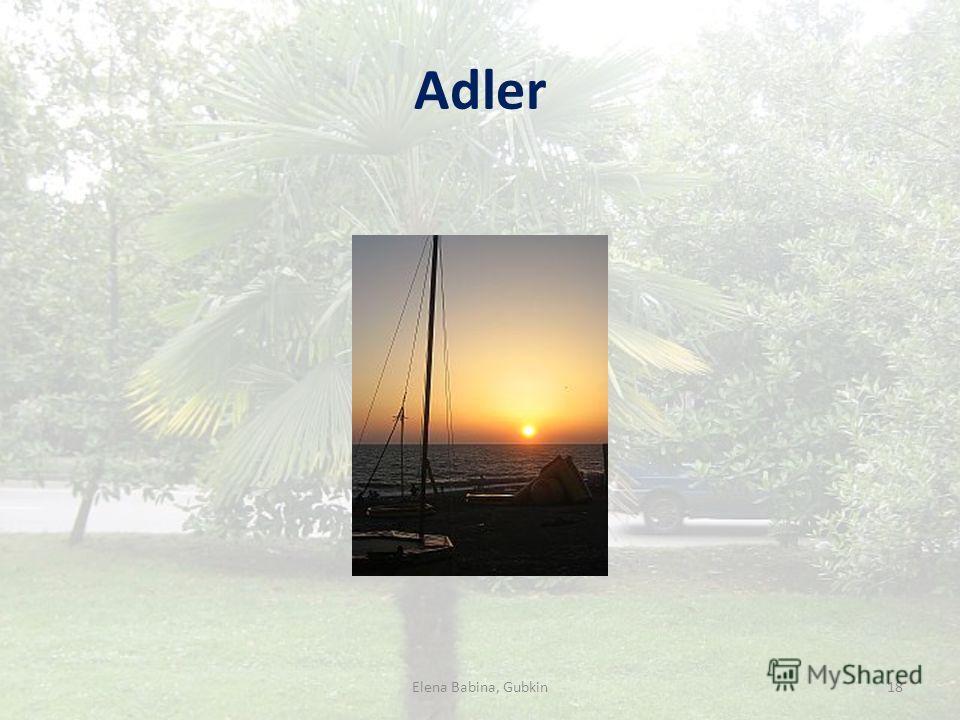 Adler 18Elena Babina, Gubkin