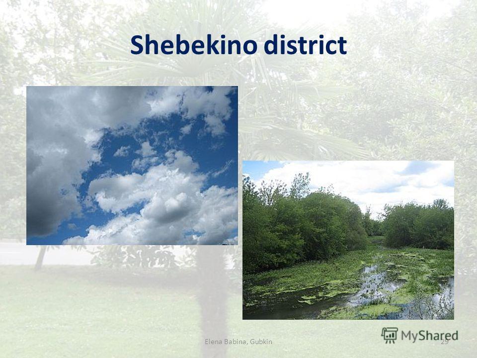 Shebekino district Elena Babina, Gubkin29