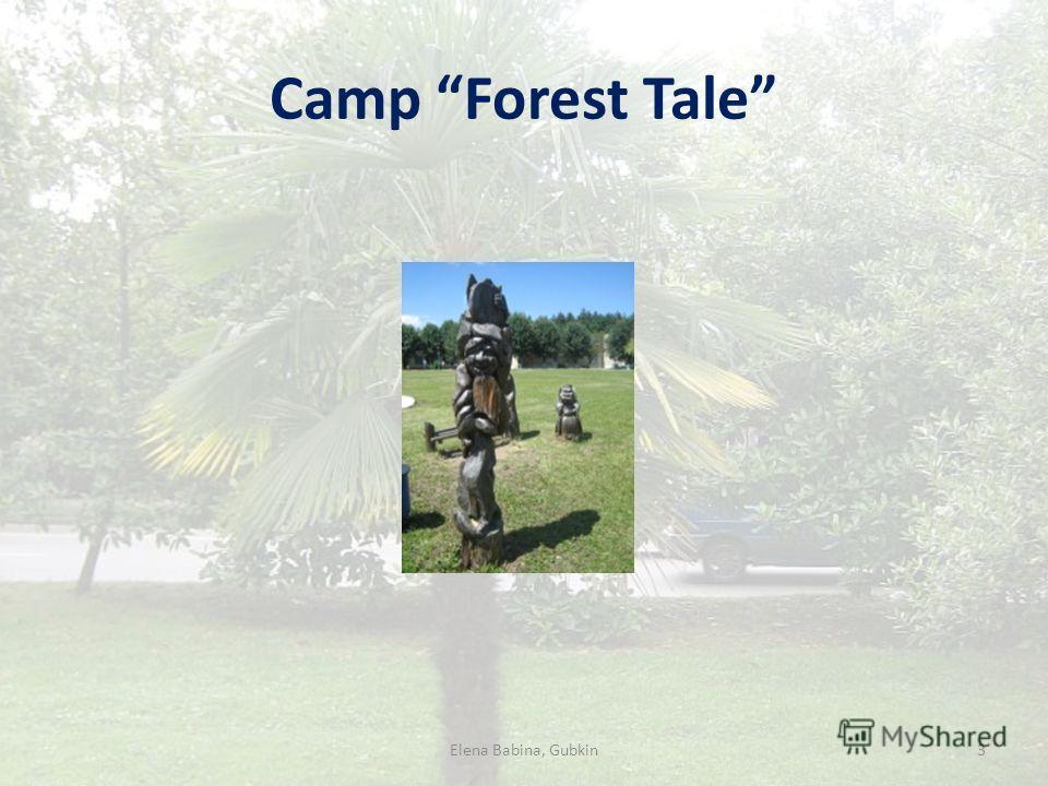 Camp Forest Tale Elena Babina, Gubkin3