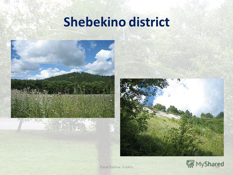 Shebekino district Elena Babina, Gubkin30