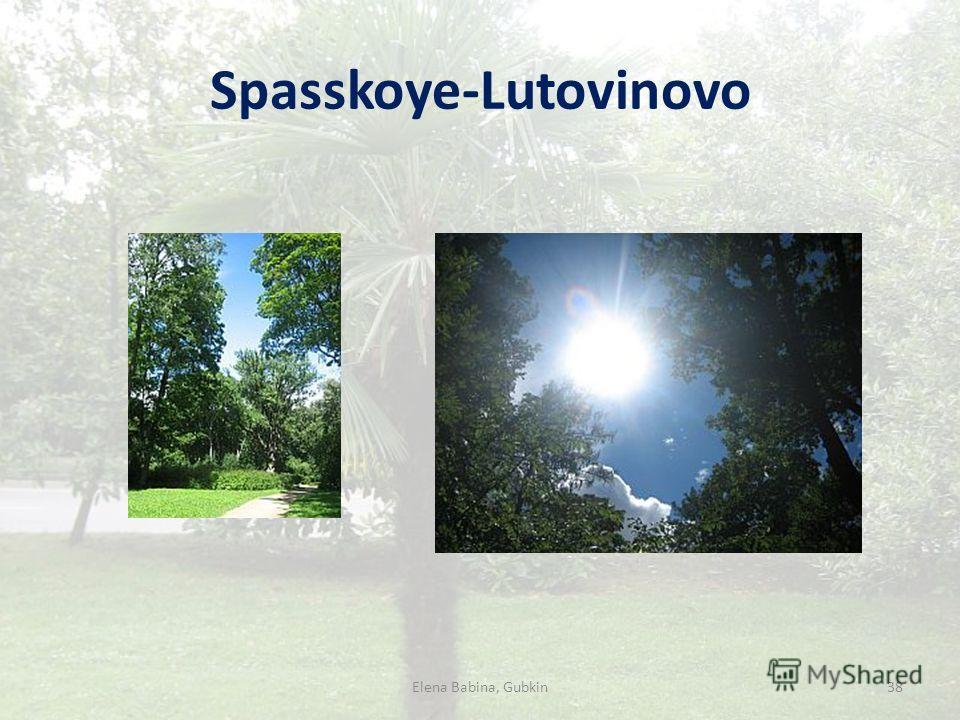 Spasskoye-Lutovinovo Elena Babina, Gubkin38
