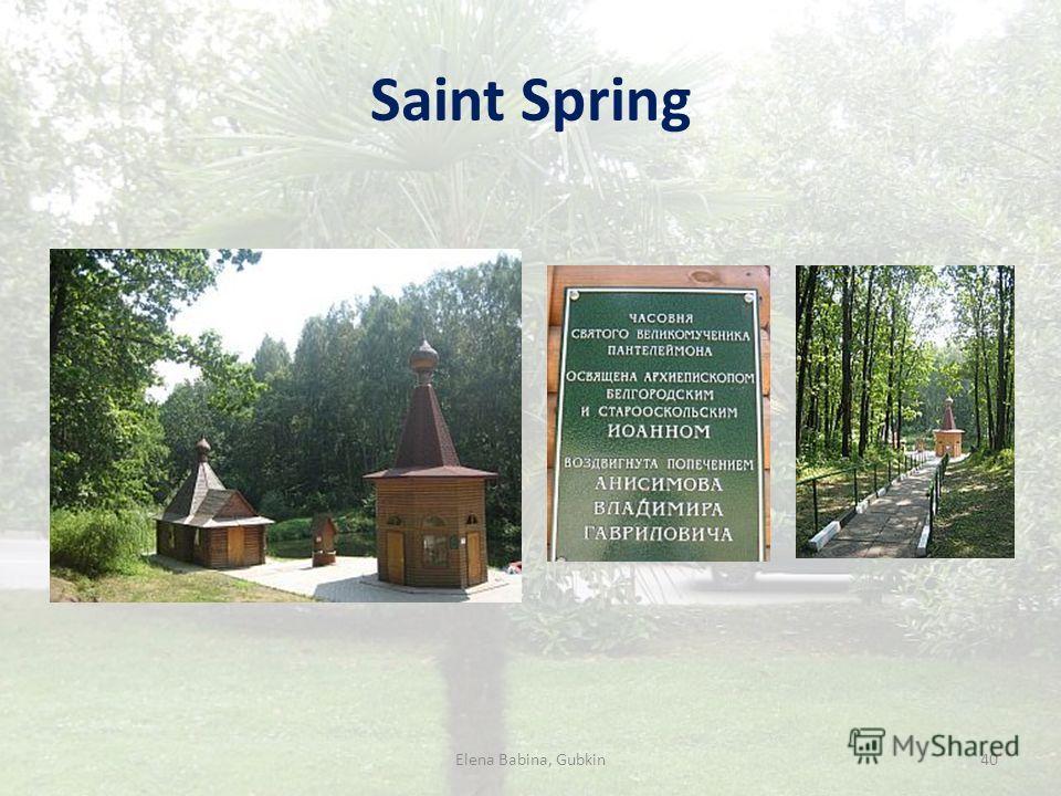 Saint Spring Elena Babina, Gubkin40