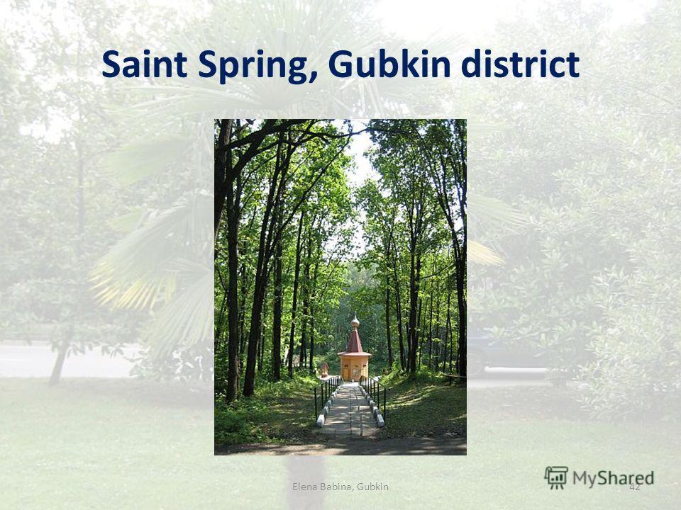 Saint Spring, Gubkin district Elena Babina, Gubkin42