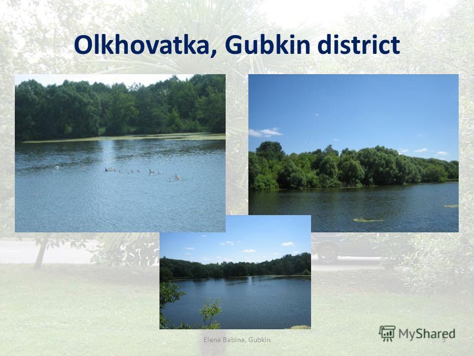 Olkhovatka, Gubkin district Elena Babina, Gubkin5