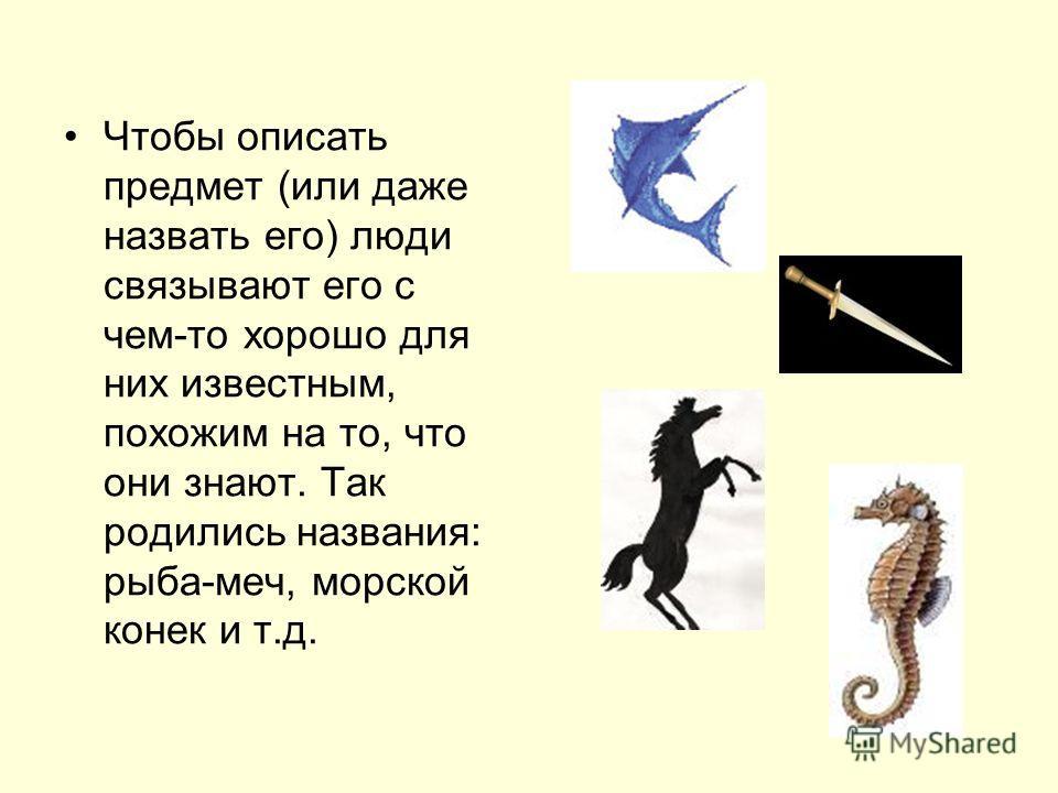 Чтобы описать предмет (или даже назвать его) люди связывают его с чем-то хорошо для них известным, похожим на то, что они знают. Так родились названия: рыба-меч, морской конек и т.д.