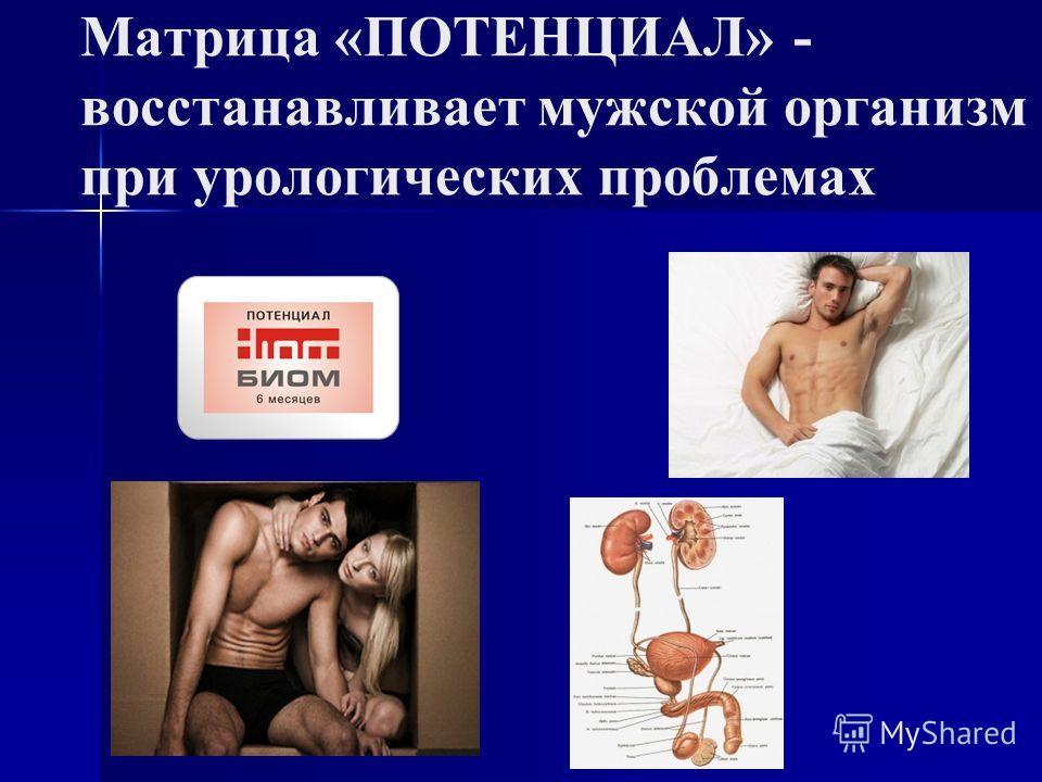 Матрица «ПОТЕНЦИАЛ» - восстанавливает мужской организм при урологических проблемах