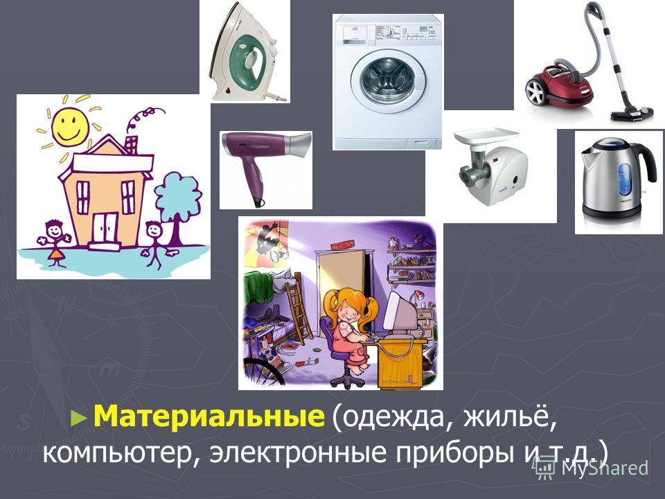 Материальные (одежда, жильё, компьютер, электронные приборы и т.д.)